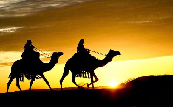 Keteladan Imam Syafi'i dalam Menuntut Ilmu